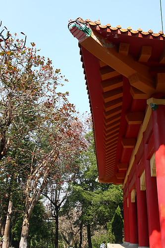 嘉義公園孔廟11