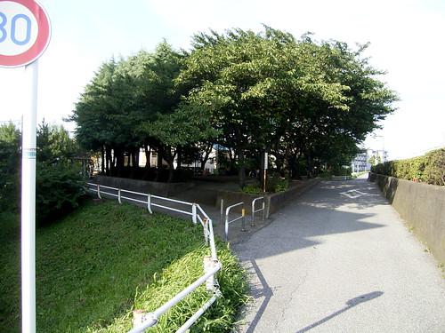 水神社、土手が膨らんでいる。