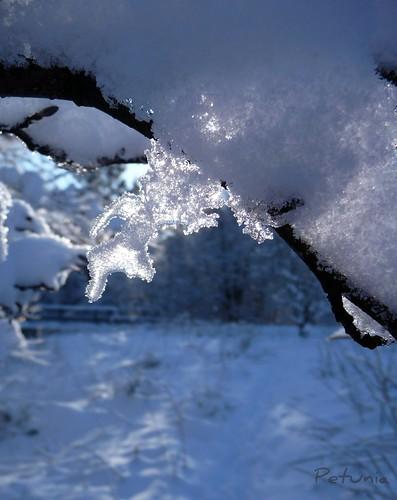 Snødiamanter 1