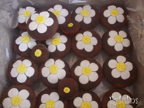 cupcake- papatya
