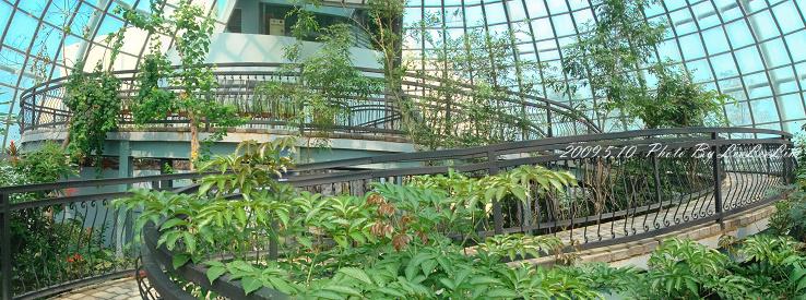 蝴蝶溫室花園-嘉大昆蟲館|嘉義假日親子好去處