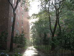 Summer Sun Shower in Stuyvesant Town by Marianne O'Leary, on Flickr