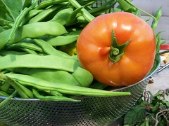 First Harvest of '09 (jazzijava) Tags: red food plants house ontario canada green home silver garden tomato blog beans healthy backyard harvest vegetable blogger fresh ingredients blogged peppers local growing organic homegrown vitamins nutrition oshawa glutenfree cheapfood seive whatsmellssogood