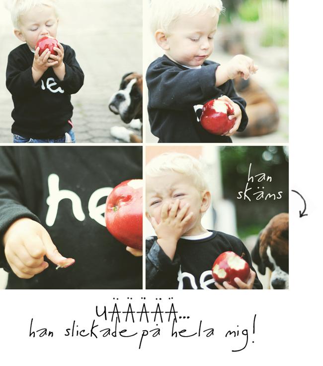 äpple