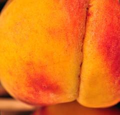 Peach Fuzz (Len Radin) Tags: radin peachfuzz colorphotoaward drurydrama