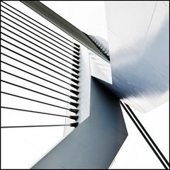 Rotterdam bridge (Maerten Prins) Tags: bridge abstract lines metal grey rotterdam erasmus steel minimal lookingup upskirt brug egdes