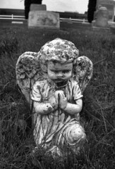 knealing cherub (Jo Naylor) Tags: old cemetery grave graveyard stone angel carved antique tomb tombstone cherub gravestone ornate