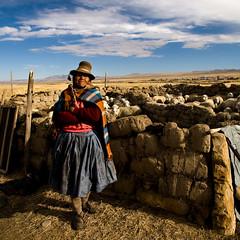 éleveuse d'alpacas, Crucero, Puno, Pérou