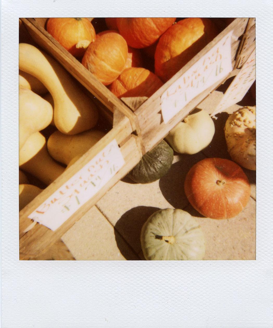 pola: fall