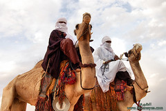 Daraj Festival of the international tourism Session 12         ( [ Libya Photographer ]) Tags: tourism festival international camel session 12 camello deve  camelo chameau       daraj