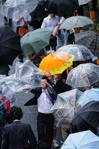 Note to self: bring a stronger umbrella for the next typhoon!: Shinagawa Station, Tokyo