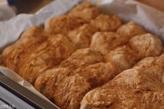 Baking Bread (Part 4): Out of the oven (Cobra_11) Tags: food canon bread essen bokeh comida delicious homemade pan canoneos delicioso ef50mmf18ii brot selbstgemacht yemek lecker ekmek caseros leziz ef50mm118ii lezzetli canoneos450d digitalrebelxsi evdeyaplm