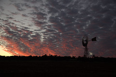 Queensland countryside (Lauri Vin) Tags: sunset wind australia queensland yahoo:yourpictures=skyline