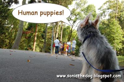 Human Puppies