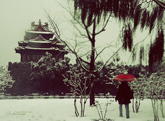 Snowy Beijing (ShanLuPhoto) Tags: china winter red snow sepia umbrella chinese beijing lonely 北京 冬天 雪 角楼 thefirstsnow loolooimage