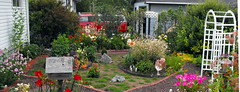 home (Gloria1207) Tags: canada flower mygarden archways pathway flowerbeds gmm1207 gloria1207