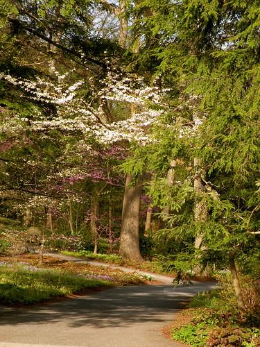 Visit: Longwood Gardens blog image 7