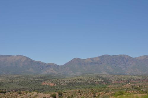 Arizona 2011 231