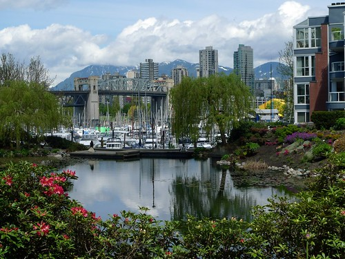 Burrard Bridge from the Lagoon apartment buildings