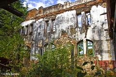 Ruinas da Usina de Acar Santo Antnio (Rita Barreto) Tags: brasil miranda pantanal matogrossodosul usinadeacarsantoantnio cidadedemiranda ruinasdausinadeacarsantoantnio