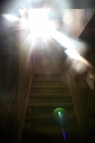 flare hallway