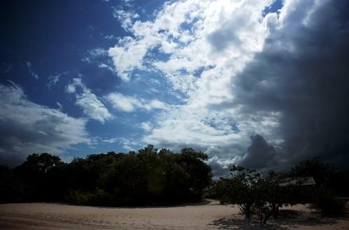 clouds011309 328