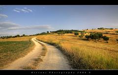 peaceful (Birinni) Tags: italy rural landscape countryside campagna marche macerata marchigiana birinni