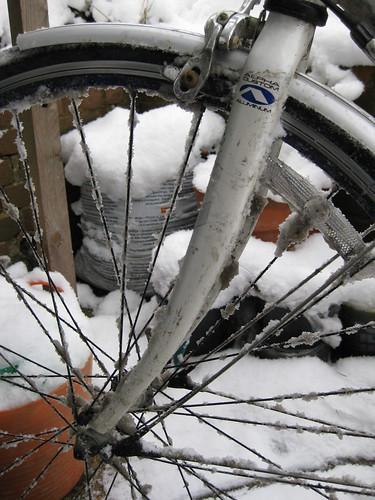 Snow spokes