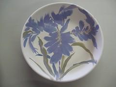 Bearded Iris interior