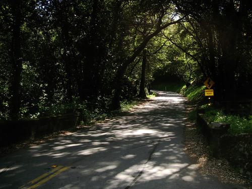 Start of the Old La Honda climb