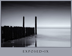 Exposed IX - Two Birds (Joel Tjintjelaar) Tags: longexposure blackandwhite bw holland blackwhite pilings vlissingen groynes flushing selenium 2bi