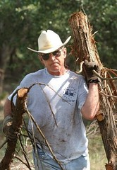 gwbush_working