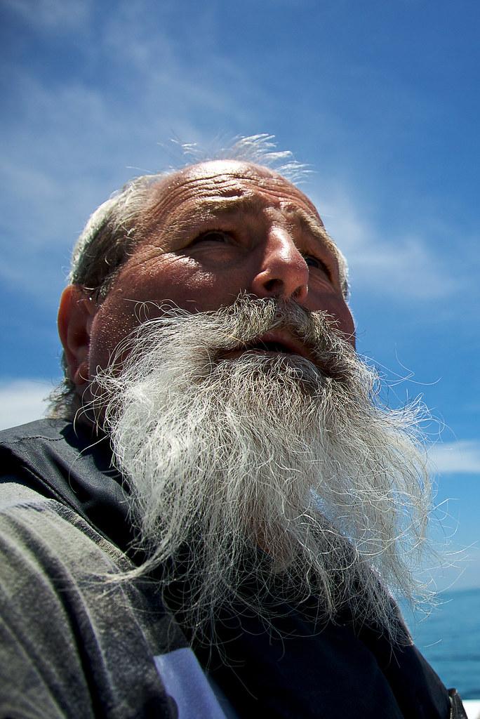 Grey beard the pirate