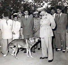The only real friend (Kodak Agfa) Tags: africa history egypt 1950s government politicalleaders mohamednaguib mohammednaguib