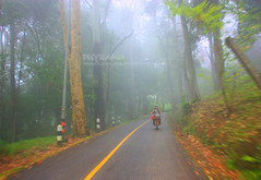 Ride on Beautiful Road (Pkamo@Tai) Tags: road trip travel beautiful stairs thailand drive tour ride culture motorbike thai chiangmai moutain naka  doisutep puykamo