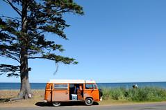 Little Miss Sunshine moment. Unintentionally. (PoolingWetPaint) Tags: ocean camping orange vw volkswagen bc pacific reststop stop rest van westy camper bigorange campervan queencharlotteislands westfalia haidagwaii littlemisssunshine