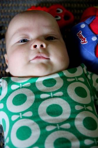 Lassi, 4 months