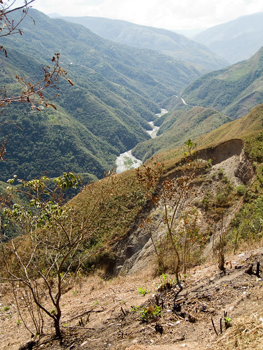 View down Yungas valley