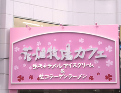 caramel (anchalee) Tags: pink tokyo cafe hokkaido caramel bokujo hanabatake