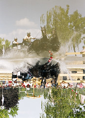 reflection ... (zsozso68) Tags: world horse reflection tree water canon eos driving marathon crowd pairs 3000v kecskemt champonship supershot platinumphoto anawesomeshot citrit theunforgettablepictures goldstaraward luxtop100