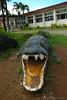 Irawan Crocodile Farming Institute (adcristal) Tags: statue mouth farm philippines farming nikond70s crocodile croc puertoprincesa palawan crocodilefarm barangay irawan tamron1750mmf28 palawanwildliferescueandconservationcenter