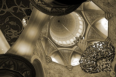 Variety ( Maitha  Bint K) Tags: sepia architecture nikon angle 14 uae ad wide mosque zayed g1 mm variety nikkor abu dhabi 2009 sheikh  d3 islamic      maitha   g1uae  wwwg1uaecom