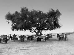 Taberna Paradiso Agia Anna Naxos Grecia (ggian79) Tags: summer bw anna blackwhite greece grecia cyclades paradiso naxos taberna agia