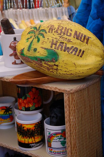 Big Nut from Hawaii