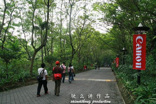 Elephant Walk Entrance