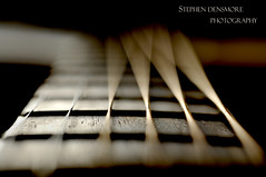 (stephenmdensmore) Tags: music blur macro nikon close strings