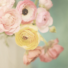 L U S H (Shana Rae {Florabella Collection}) Tags: flowers stilllife floral vintage haze nikon blossoms 85mm explore vase frontpage milkglass shanarae florabellacollection softdreamyandethereal vintagehazeaction