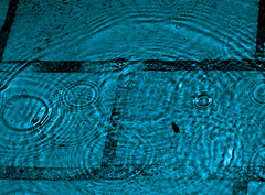 Viva Concentrica (Craig Jewell Photography) Tags: water rain droplets waves iso400 turquoise circles ripple bricks wave 100mm rainy ripples f80 raining dripping concentric interference splashing ef100mmf28macrousm flashfired 1250sec 20091025220452mg1771 craigjewellphotography