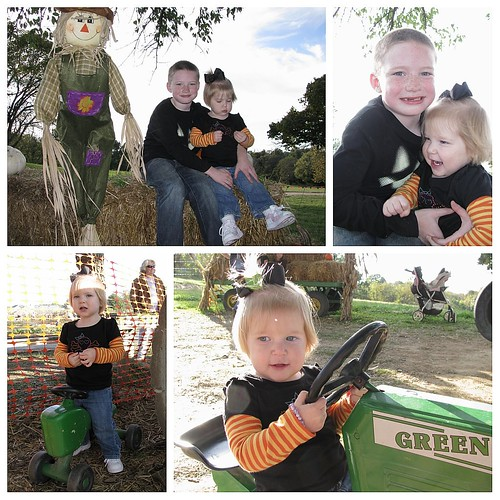 Pumpkin farm collage.1
