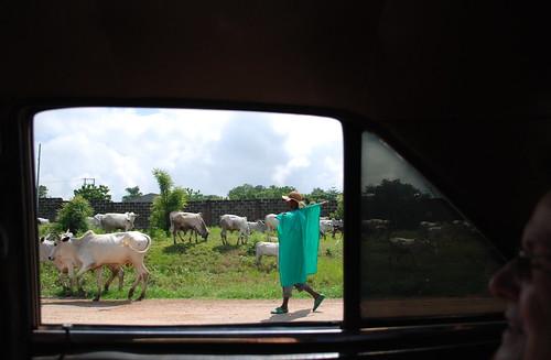 Nigeria fav - 05